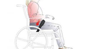 Dynamic Backs and Pelvic Positioning Belts
